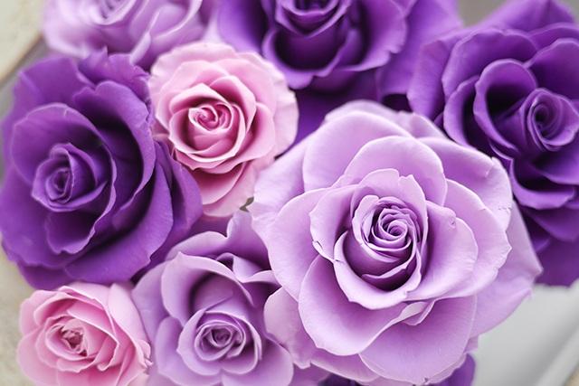紫のプリザーブドフラワー